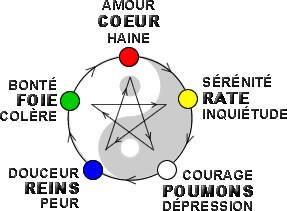 L'étoile des forces contrôlantes